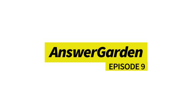 AnswerGarden - Umfragen